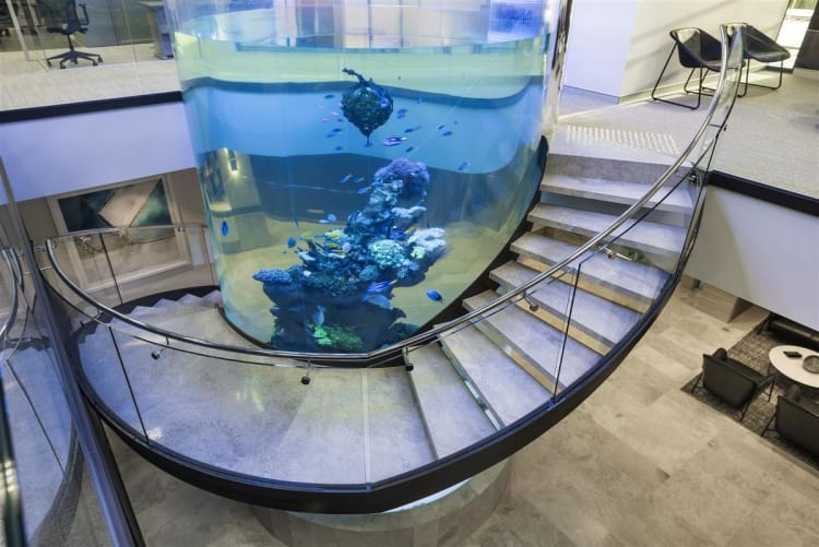 Jaw-dropping Aquarium & Curved Staircase