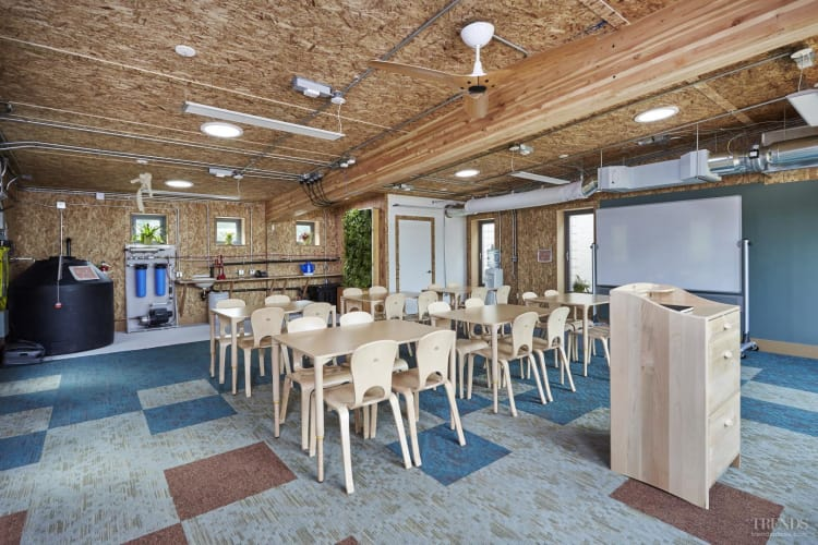 Toxin-free classrooms feature Mohawk carpets, available at Premium Flooring