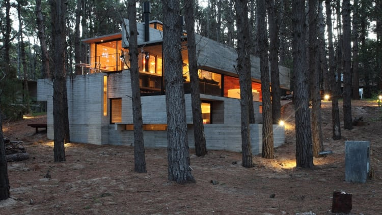 It's clear every effort was made to ensure the home didn't interfere with the surrounding forest