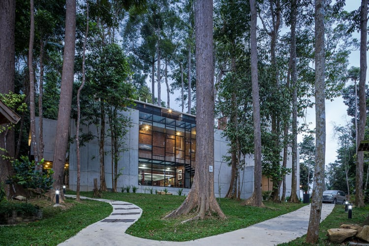 New home design on wooded site blurs the lines between indoors and outdoors
