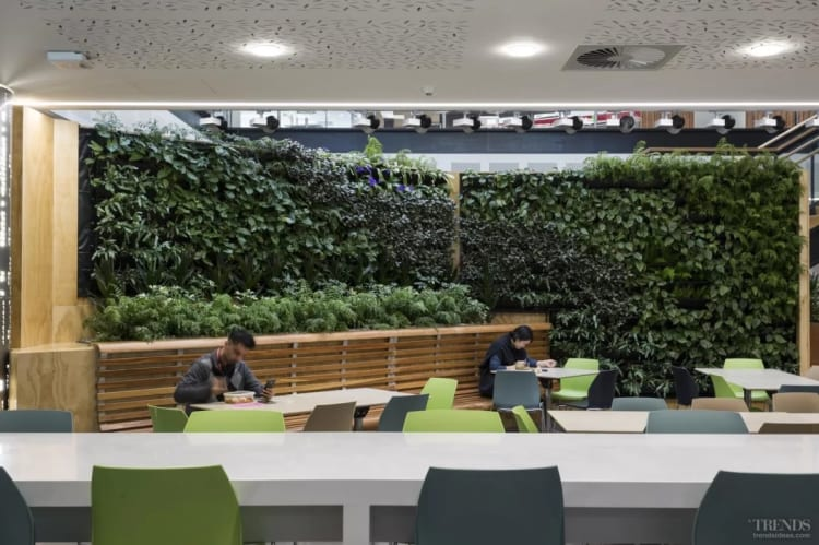 The Datacom building features a green wall