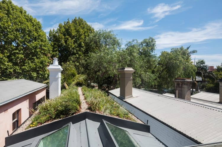 The rooftop garden both helps the house to stand out and blend in