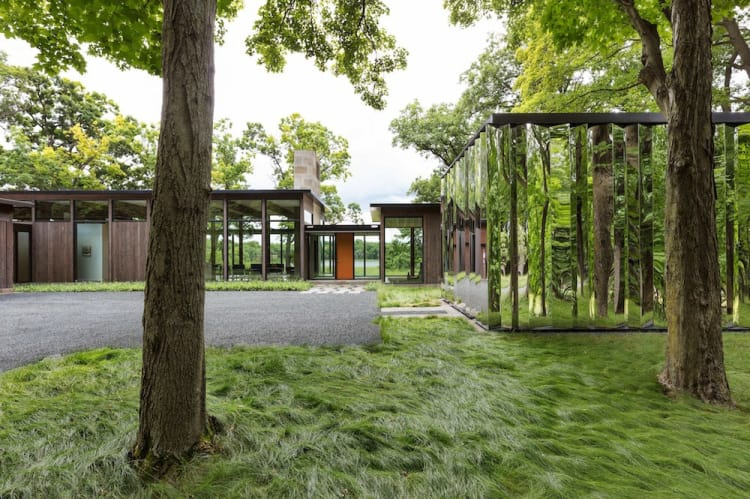 The home sits relatively low, respecting the surrounding trees