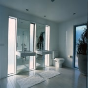 A view of a bathroom featuring basins, toilet daylighting, door, floor, glass, interior design, structure, window, gray