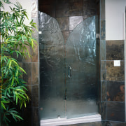 View of the shower doors - View of door, glass, plumbing fixture, black, gray