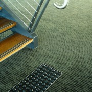view of the carpets by onterra - view floor, line, mesh, metal, green, black