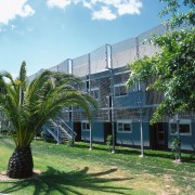 An exterior view of the library, trees. - architecture, arecales, building, condominium, estate, home, house, neighbourhood, palm tree, plant, property, real estate, tree, green