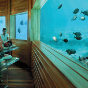 A view of the underwater treatment centre. - leisure, marine biology, swimming pool, underwater, water, teal