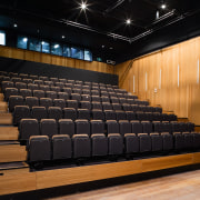 A view of some seating from Civic Seating auditorium, performing arts center, theatre, black, brown