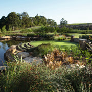 View of the steam and lake that is grass, grass family, landscape, plant, pond, tree, vegetation, water, wetland, brown, black