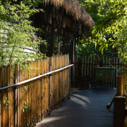 A view of the public walkways imersed in arecales, fence, house, leaf, outdoor structure, path, plant, tree, walkway, wood, black, brown