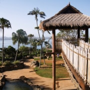 A view of the Asian elephant enclosure featuriing arecales, gazebo, leisure, outdoor structure, palm tree, resort, tree, white, black