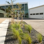 View of Williamstown High School in Melbourne. Designed architecture, grass, home, house, landscaping, plant, real estate, residential area, tree, walkway