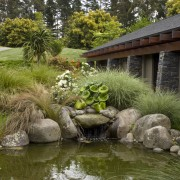 View of concrete rock pool which is made backyard, botanical garden, garden, grass, landscape, landscaping, outdoor structure, plant, pond, tree, vegetation, water, watercourse, yard, brown