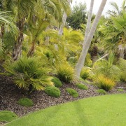 View of a designed and landscaped garden which arecales, botanical garden, ecosystem, flora, garden, grass, grass family, landscape, landscaping, lawn, palm tree, plant, tree, tropics, vegetation, yard, brown, green