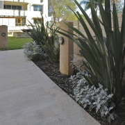 View of a paved pathway at the Lindfield agave, arecales, courtyard, grass, landscape, landscaping, palm tree, plant, walkway, wall, yard, gray, black