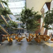 Image of the conceptual drawings for the National plant, resort, tree, brown