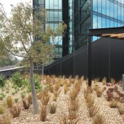 Exterior view of One East Melbourne developed by grass, grass family, plant, real estate, tree