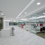 White marble was introduced for the flooring to ceiling, daylighting, interior design, lobby, gray