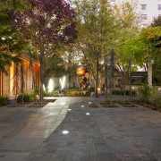 View of private courtyard which features native planting, autumn, city, downtown, evening, home, lane, leaf, lighting, neighbourhood, night, plant, real estate, residential area, road, street, town, tree, urban area, walkway, brown