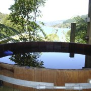 Close-up view of the traditional tub - Close-up backyard, outdoor structure, plant, property, reflection, swimming pool, tree, water, wood