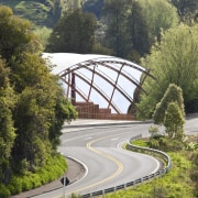 View of the canopy at the Waitomo Caves bridge, fixed link, highway, plant, road, sky, tree, brown, gray