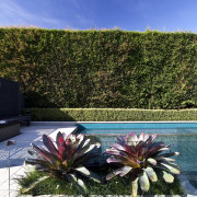 The rear yard of this home has been flora, flower, landscape, plant, sky, vacation, water, blue