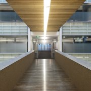 View of the interior of the Vogel Center architecture, daylighting, gray, brown