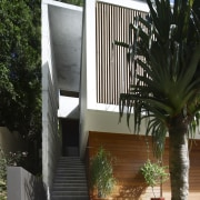 This house was designed by Kon Panagopoulos and architecture, arecales, courtyard, facade, home, house, outdoor structure, palm tree, property, real estate, black