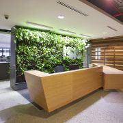Interior with wooden reception area and green plant furniture, interior design, lobby, gray, brown