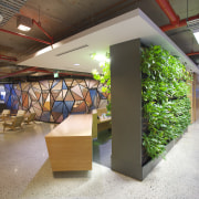 Interior with wooden reception area and green wall. interior design, brown, gray