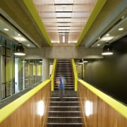 Stairs with lime and yellow detail. - Stairs architecture, ceiling, daylighting, interior design, metropolitan area, brown