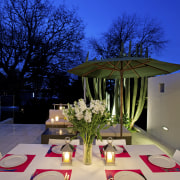 Contemporary outdoor entertaining area - Contemporary outdoor entertaining architecture, design, flower, home, house, interior design, lighting, plant, table, tree, blue
