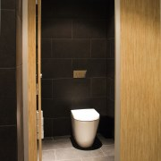 Fowler Seido Wall Faced Invisi II toilet suites bathroom, floor, flooring, interior design, plumbing fixture, product design, room, sink, tile, toilet, wood, black