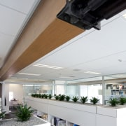 New seismic structural systems technology is transforming the architecture, ceiling, daylighting, interior design, roof, gray, white