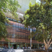 Tyree Energy Technologies Building University of New South architecture, building, city, condominium, facade, house, mixed use, plant, plaza, real estate, tree, brown