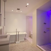 The different colored settings vary the mood in architecture, bathroom, ceiling, daylighting, estate, floor, flooring, home, interior design, lighting, real estate, room, wall, gray