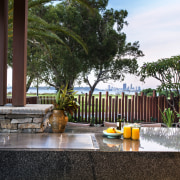 The barbecue is set in a granite-clad slab. arecales, estate, home, outdoor structure, palm tree, patio, property, real estate, resort, tree, black