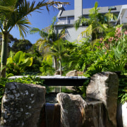 Designed by Mark Read, Natural Habitats, this garden arecales, estate, landscape, palm tree, plant, real estate, resort, tree, tropics, water, water feature, black