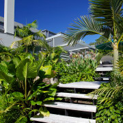 Designed by Mark Read, Natural Habitats, this garden arecales, condominium, estate, home, house, landscaping, leaf, palm tree, plant, real estate, resort, sky, tree, tropics, vegetation, walkway