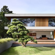 Sculptural trees and lush planting create an idyllic architecture, estate, facade, home, house, houseplant, plant, property, real estate, roof, tree