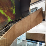 Large artworks taken from microscopic images enliven the architecture, building, daylighting, facade, glass, stairs, black, brown