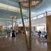 In the new Waiheke library, tall timber columns architecture, ceiling, daylighting, floor, flooring, interior design, lobby, structure, gray