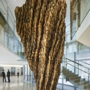 Internal growth  a wooden sculpture by Ursula fur, museum, tourist attraction, wood, gray, brown
