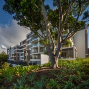 Putney Hill offers a tranquil lifestyle just twenty apartment, architecture, arecales, building, condominium, estate, home, house, mixed use, neighbourhood, plant, property, real estate, residential area, sky, tree, brown