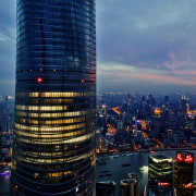 Sited in the Pudong financial hub, the twisting aerial photography, bird's eye view, building, city, cityscape, daytime, downtown, dusk, evening, landmark, metropolis, metropolitan area, night, sky, skyline, skyscraper, tourist attraction, tower, tower block, urban area, blue