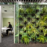 ​​​​​​​These quiet rooms are fronted by a architecture, grass, green, plant, tree, gray