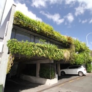 Green walls can provide acoustic and thermal properties building, condominium, facade, house, plant, property, real estate, residential area, roof, tree, white