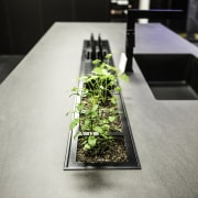 Fresh herbs simply dont come any fresher in furniture, product design, table, gray, black