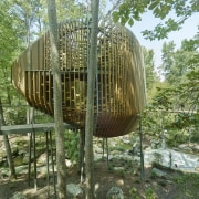 An oversized beehive in the forest? No, something botany, environmental art, plant, tree, tree house, green, brown